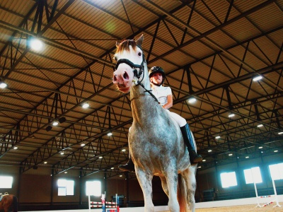 Mistico Equestrian Center - Cape Town, South Africa